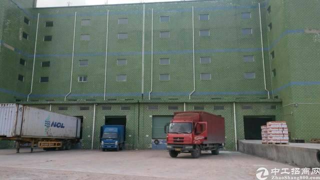 坑梓标准带卸货平台仓库7000平(可分租)-图2