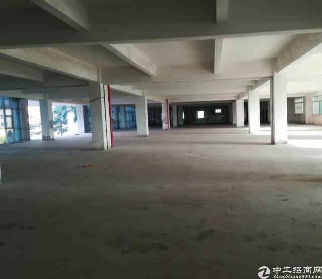 二楼高4米面积3000