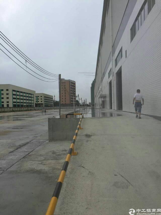 麻涌大型高台仓库8000平方出租-图2