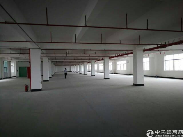 大朗新出经典独院厂房分租三楼4000平方,带消防喷淋