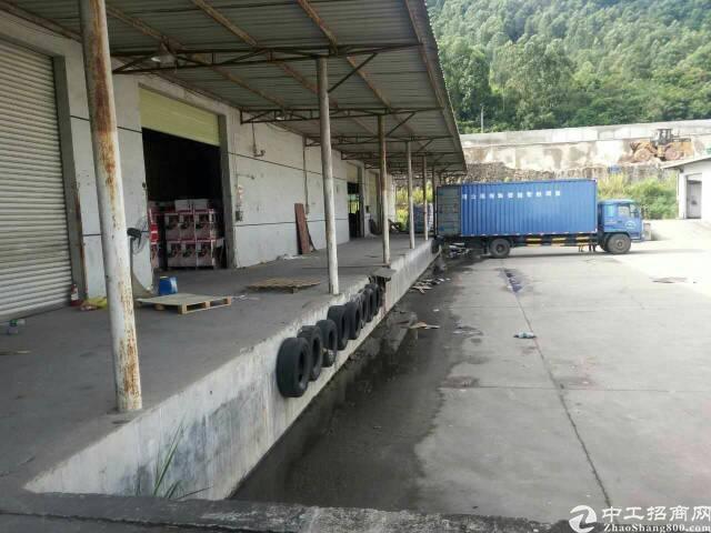 横岗横坪公路单一层仓库9600平方米招租-图2