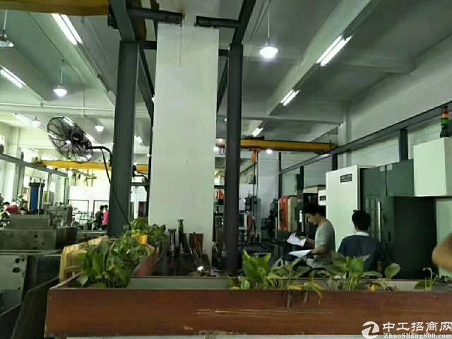 松岗新出一楼1200平米厂房招租-图4