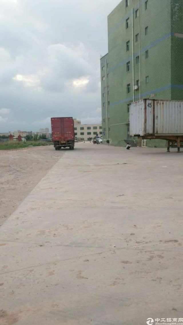 坑梓标准带卸货平台仓库7000平(可分租)