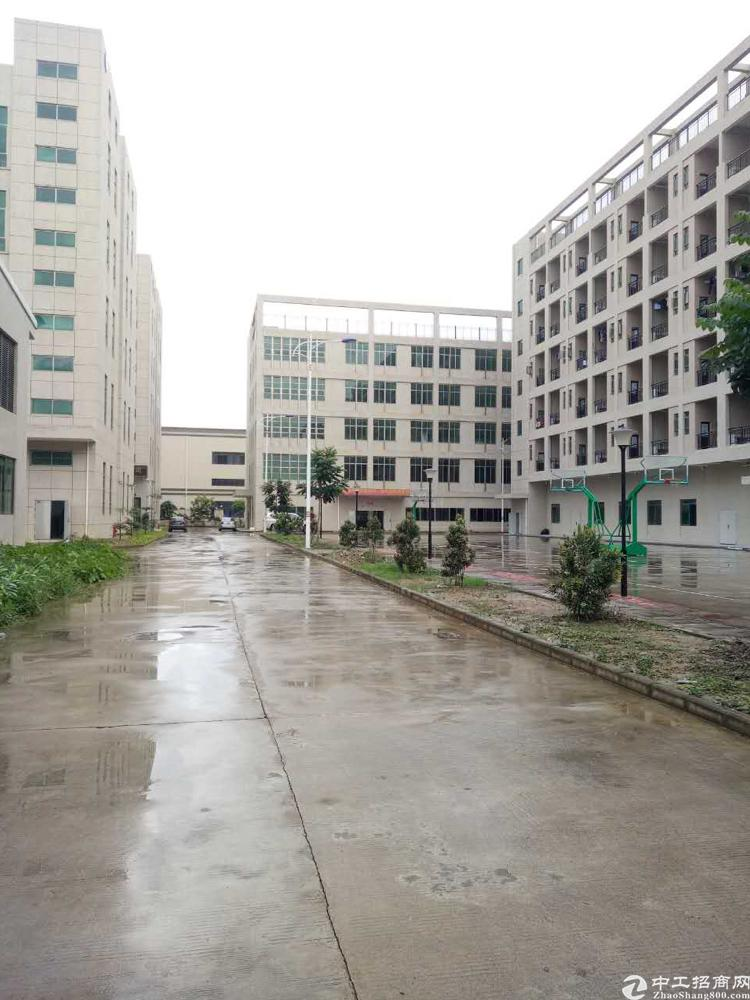 龙岗坪地标准厂房1200平米可分租