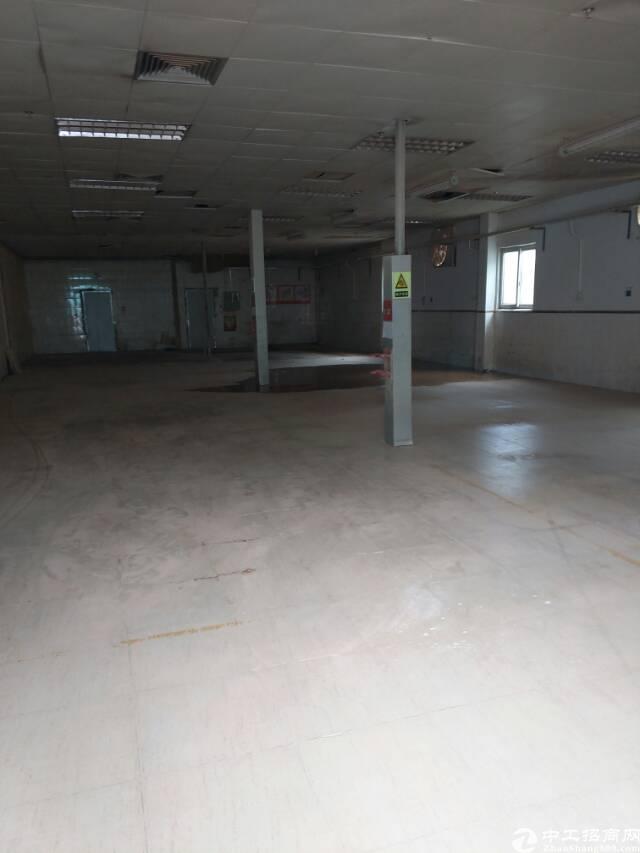 横岗大型工业区厂房250平方,可以做家具,小加工,仓库等-图3