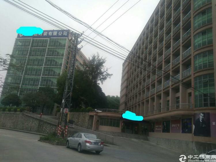 写字楼整栋招租,可做浴足,办公,酒店,可改厂房。