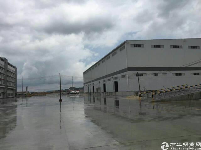 麻涌镇新出钢结构4000平方带牛角单一层独院出租