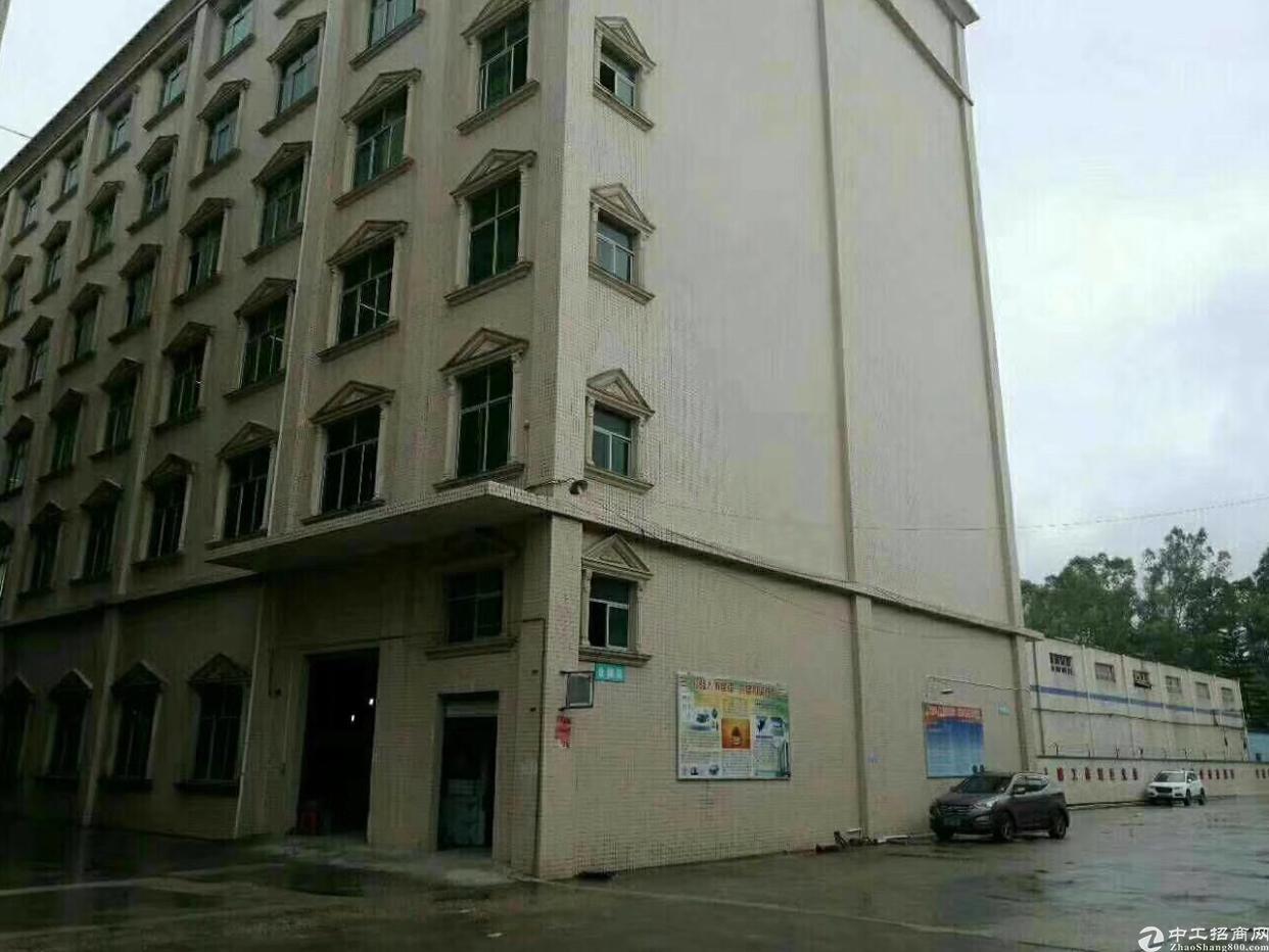 坪山 高铁站附近新出一楼2300平出租