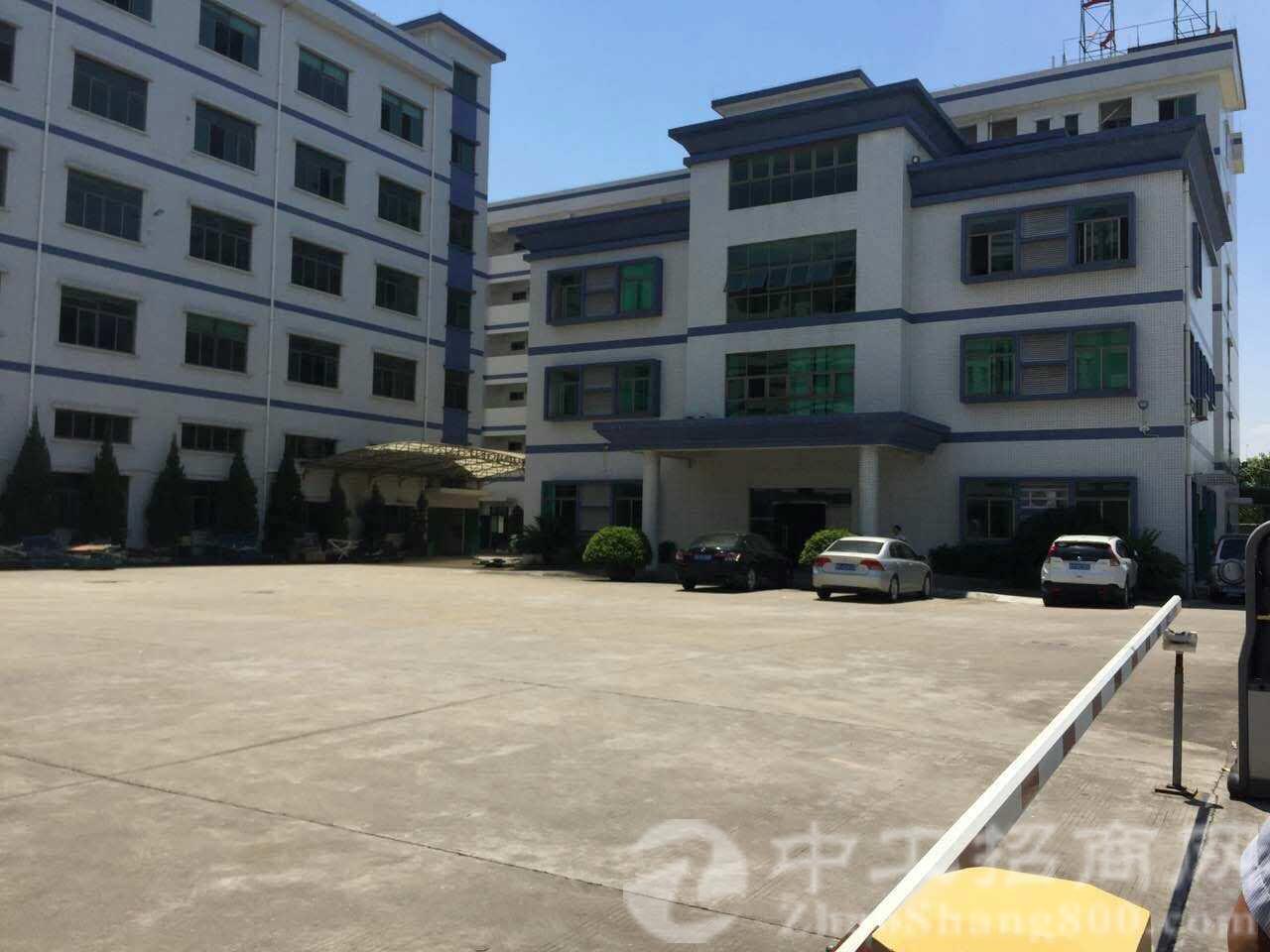 茶山原房东厂房3400平方带7.5吨行车2部,滴水9米-图2