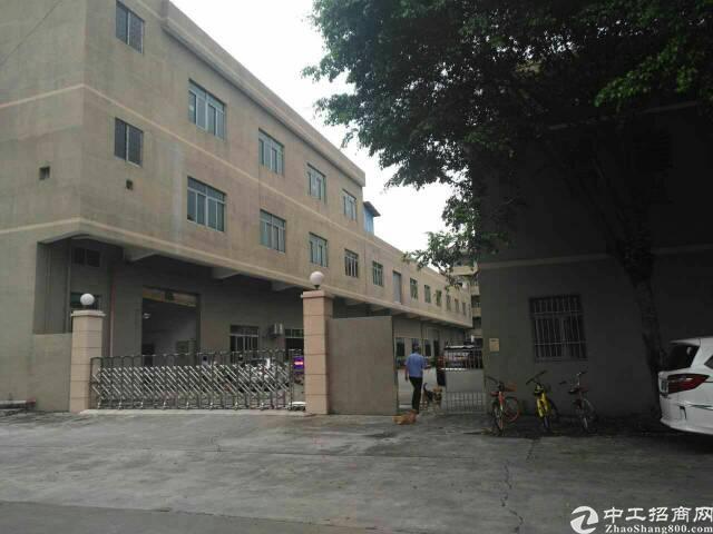 东莞市东城区周屋三楼厂房1800平方报介9块