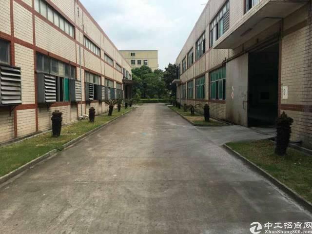 寮步镇凫山独院单层水泥顶7米高6000平方招租