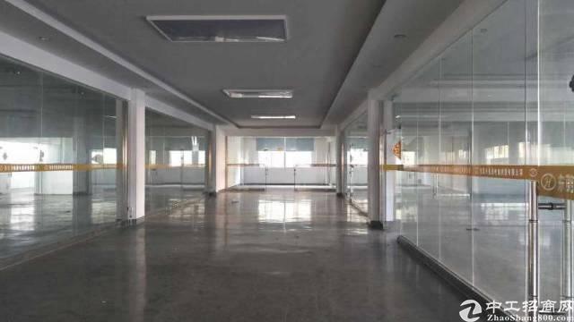 寮步标准厂房11380平方招租