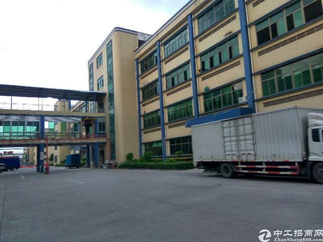 广州新塘厂房便宜出售