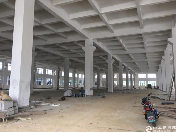 企石镇全新独栋标准厂房