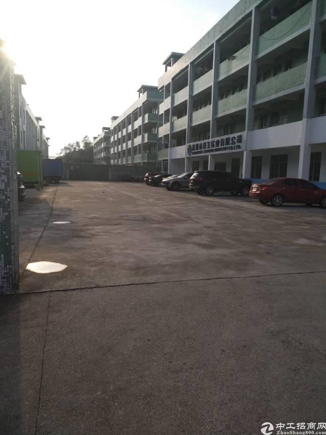 坪山 田心同富裕二楼800平带装修可任意分割使用