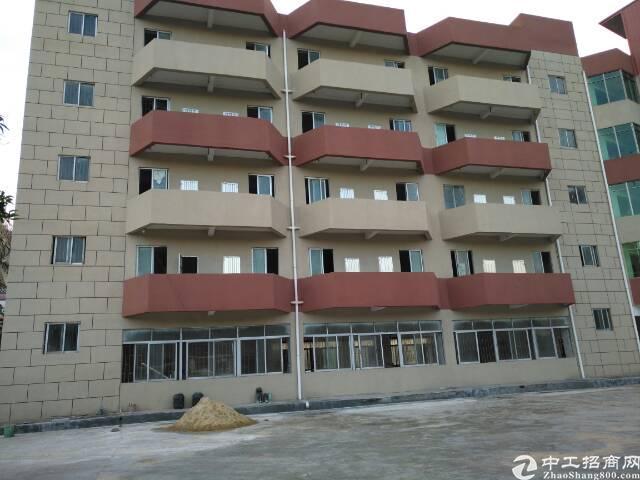 虎门镇原房东独门独院,消防全新厂喷淋6500平方