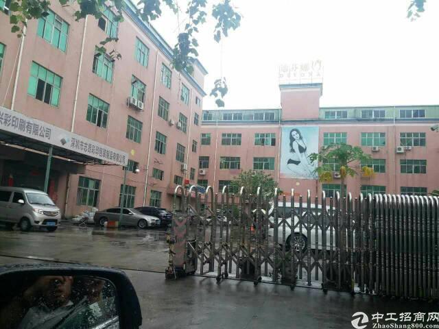 龙华天虹附近楼上2000平原房东铁皮房1.4一平