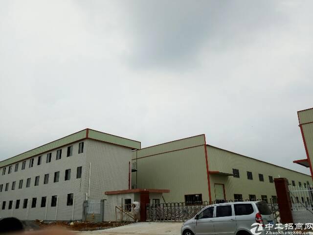 横沥镇全新钢构厂房出租6000平方  滴水11米