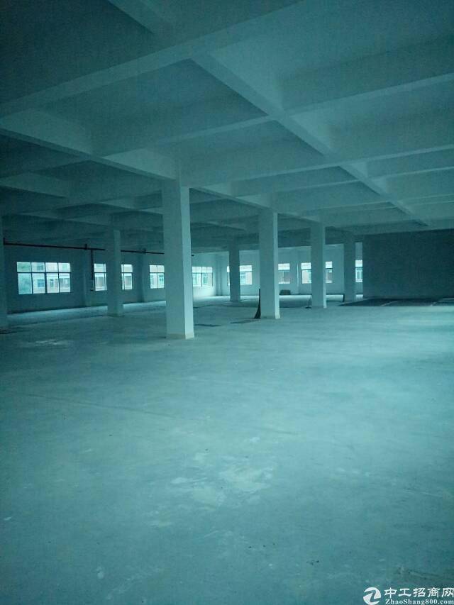 惠阳新圩约场原房东厂房2600平方米出租