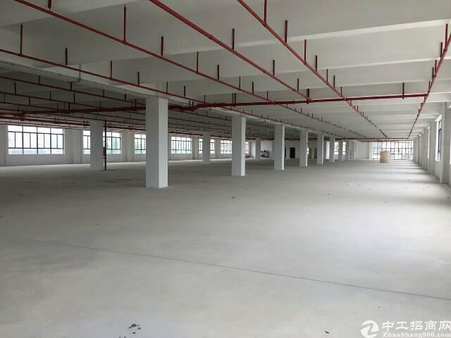 松岗新出原房东独院厂房6000平方米可做印刷行业有环保批文