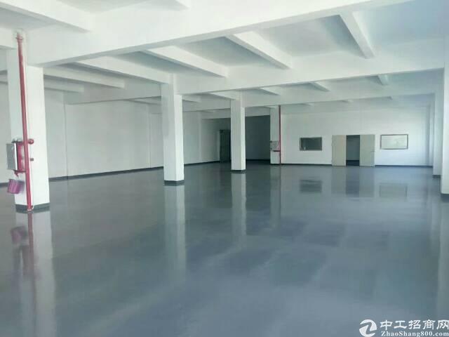 东莞清溪镇三中村 大型工业园写字楼、电商、、物流、仓库