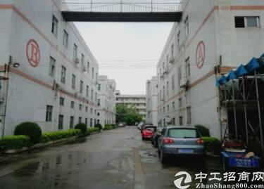 深圳市观澜建筑 42000 双证齐全厂房出售 1占地面积-图2
