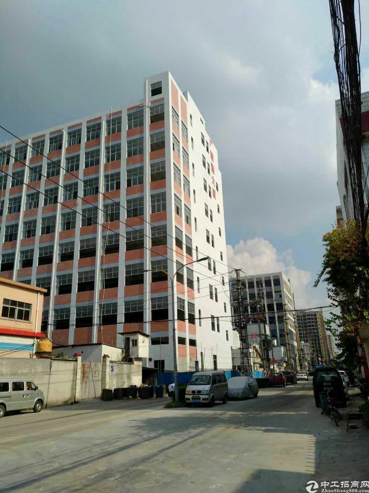 沙头乌沙大润发旁楼上3800平全新厂房招租 高5米