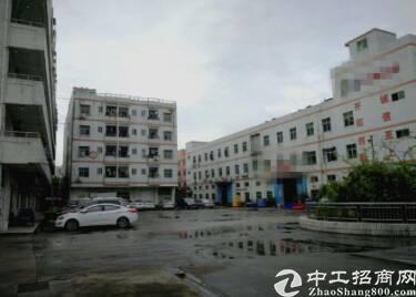 深圳市观澜建筑 42000 双证齐全厂房出售 1占地面积-图3