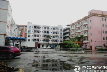 深圳市观澜建筑 42000 双证齐全厂房出售 1占地面积