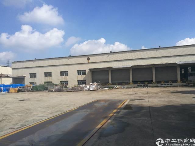 松岗独院钢结构6500平出租
