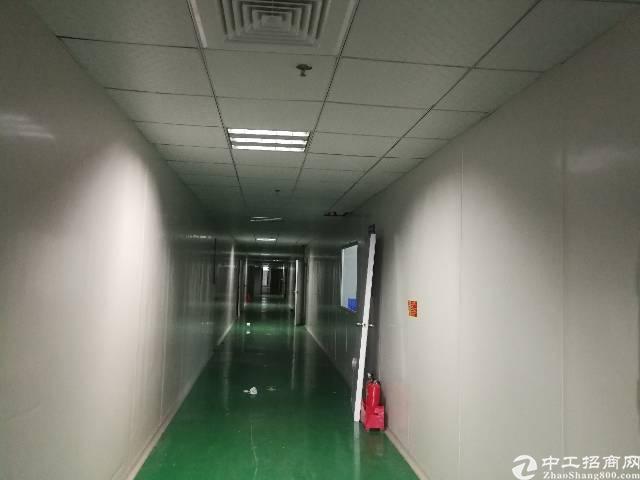 塘厦高速出口二楼豪华装修无尘车间厂房3350平米火爆招租-图3