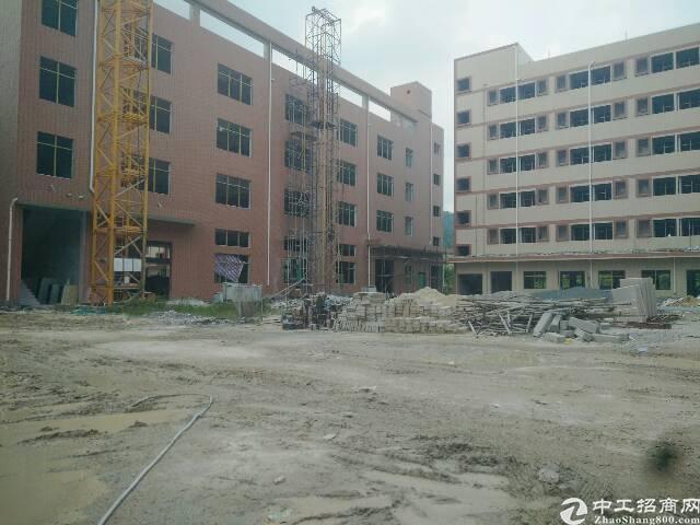 惠阳新圩全新独门独院四层厂房11000平方米招租