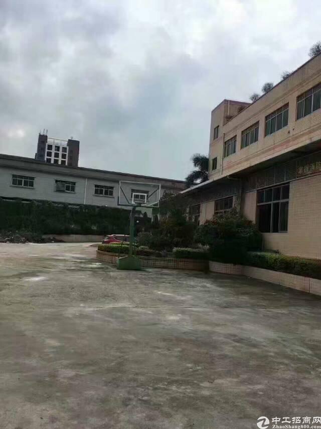 龙华高速出口红本独门独院带消防喷淋厂房6000㎡-图3