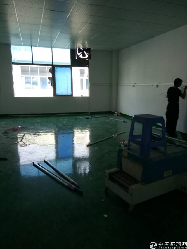 大田洋精装修2楼1300平整层