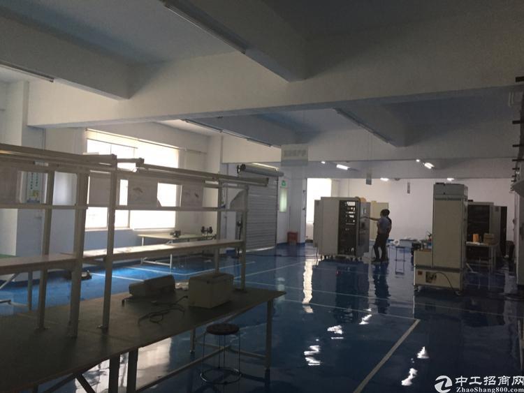 龙华油松工业园1楼带精装厂房860平招租