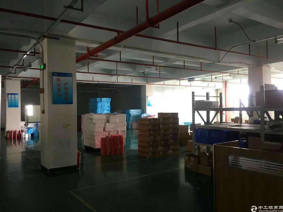 光明高新区红本厂房一整层3280平方带豪华装修,不要转让费-图3