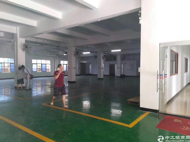 清溪新出一楼标准厂房,带豪华办公室装修,刷好地坪漆
