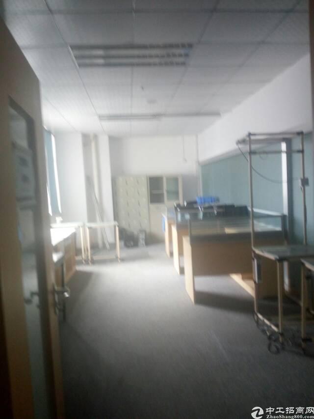 龙华深圳北站附近标准厂房楼上3000平可分租-图9