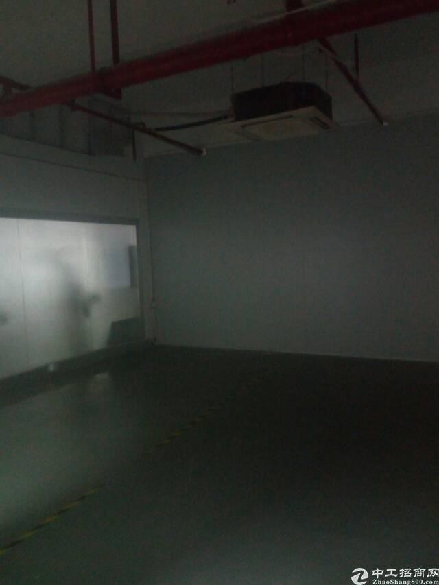 龙华深圳北站附近标准厂房楼上3000平可分租-图8