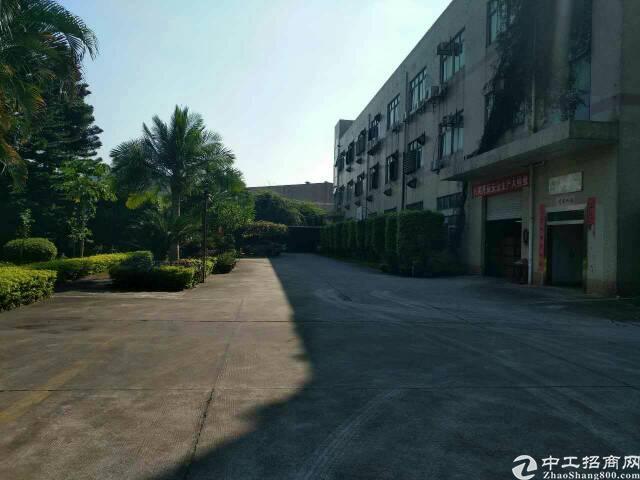福永凤凰大型工业区内2楼800平米