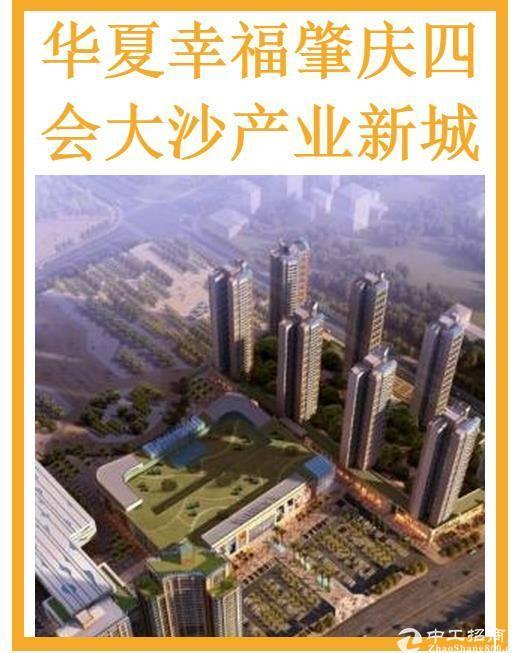 广东省肇庆市四会大沙79.4平方公里  招商对象 1