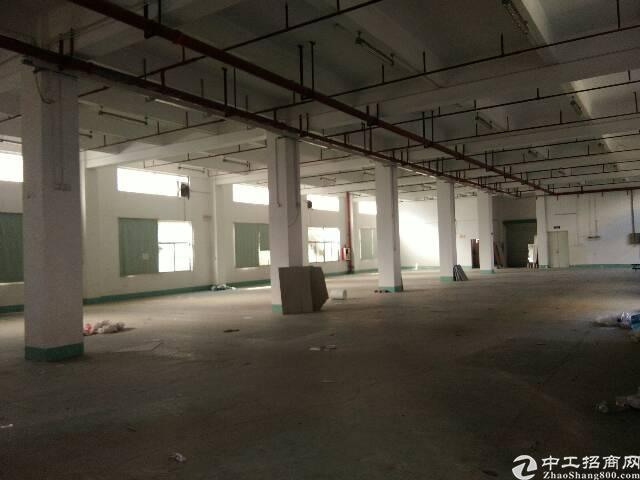 宝安洪浪北地铁口新出单层1400平米