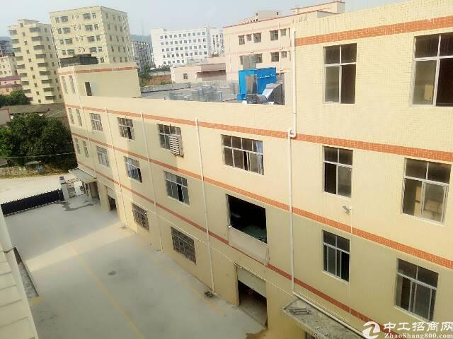 坑梓新出一楼标准厂房1800平方出租