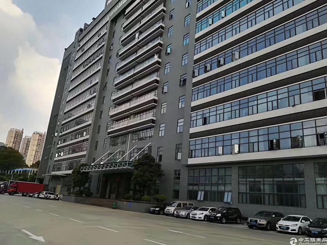 光明高新区红本厂房一整层3280平方带豪华装修,不要转让费