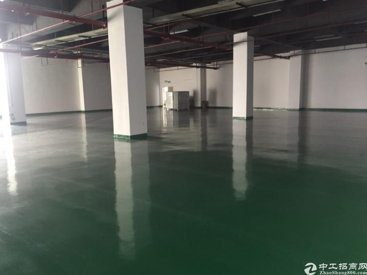 公明马山头700平米楼上带装修厂房招租-图3