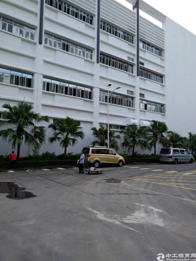 龙华汽车站旁高大上厂房-图7