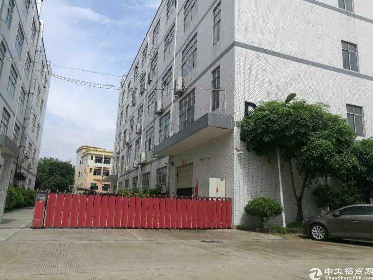 楼上带装修厂房3000平方,租金15,可分租-图2