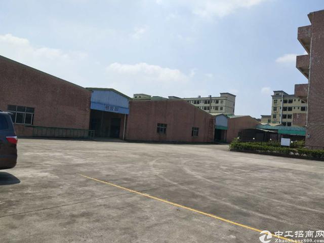 企石镇原房东独院单一层钢构厂房12000平方带消防喷淋招租