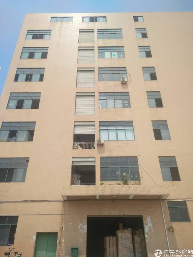 楼村一楼6米高带办公室装修1500平方亿万先生-图2