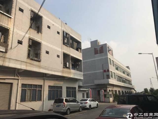 石排新出原房东独门独院厂房2400平方米宿舍1100平方米